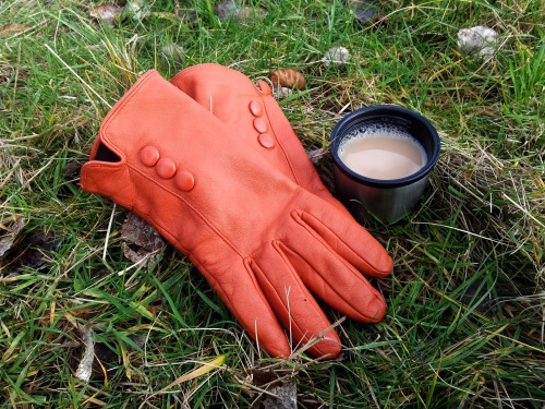 Cuppa Tea and Gloves